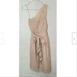 NWT Tevolio Dress 4 Beige Cold Shoulder Lined Lace